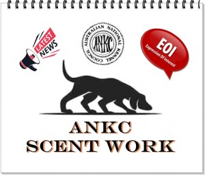 Scent work EOI.1